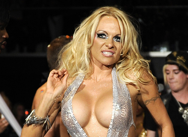 Pamala anderson porno pic something is